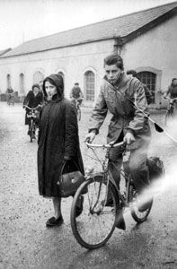 Solex & Mobylette
